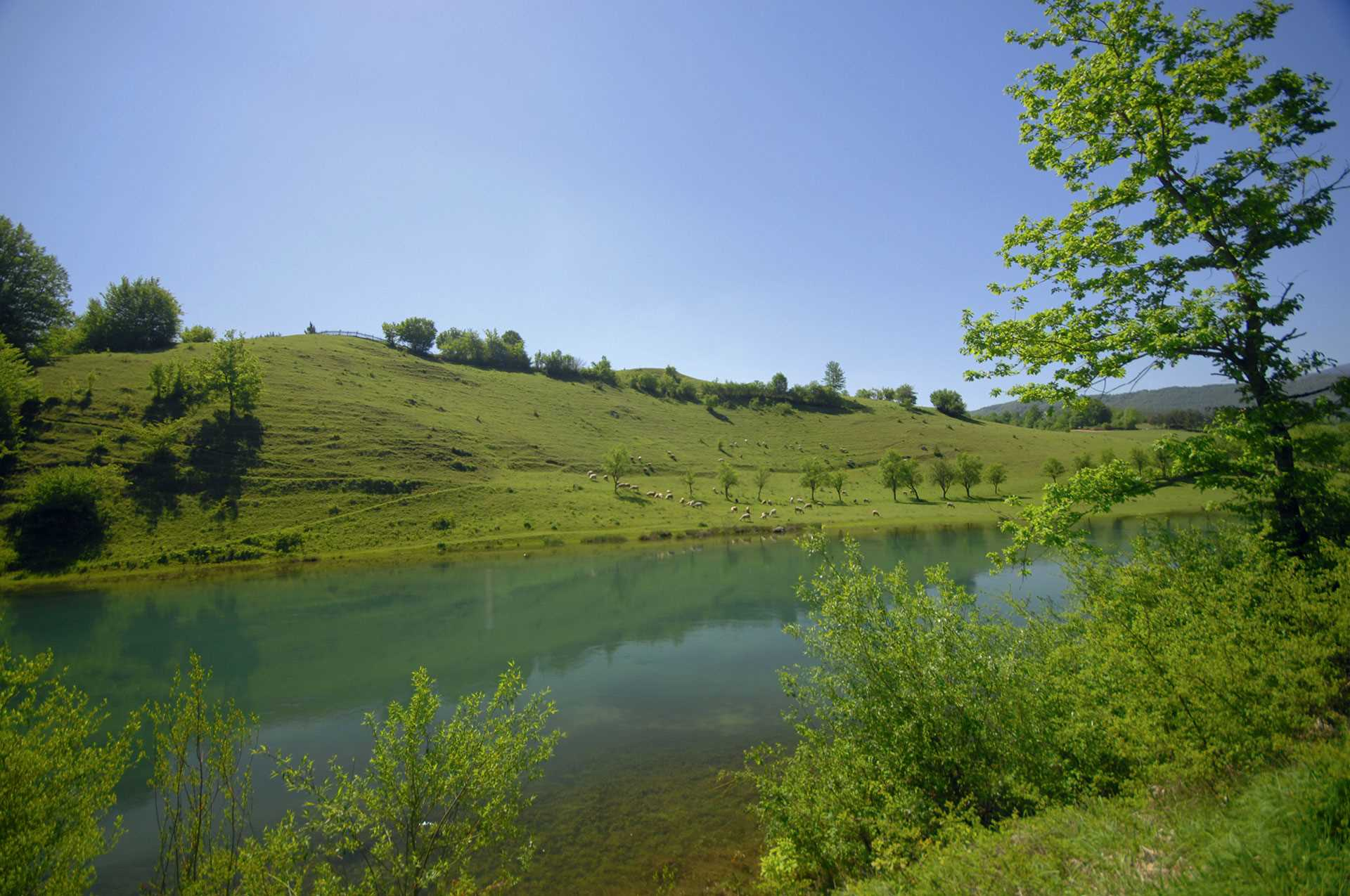 Bosnie Gal Pac Voyages de pêche