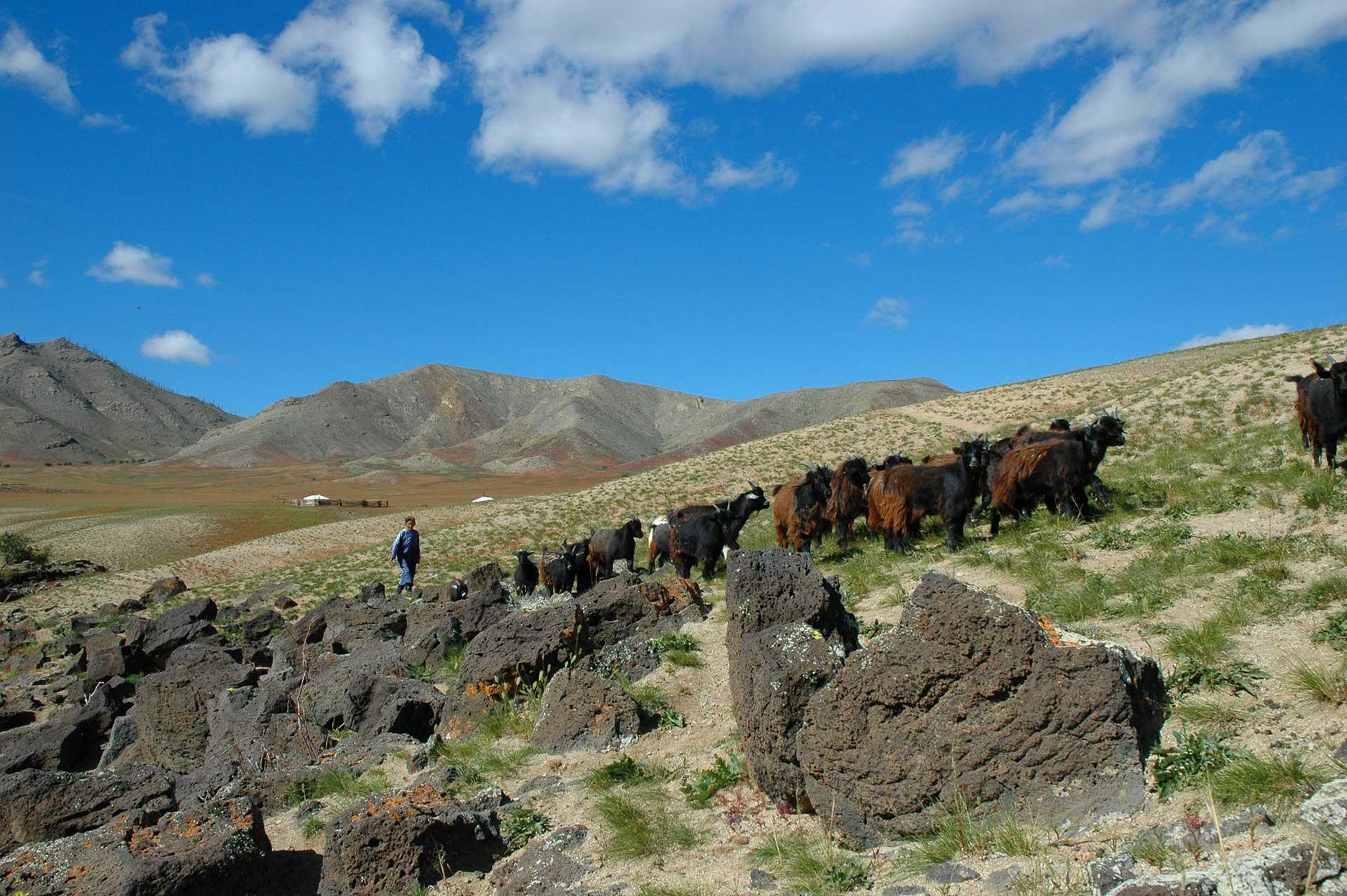 Mongolie Taimen Lodge Gal Pac Voyages de pêche